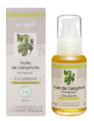calophylle